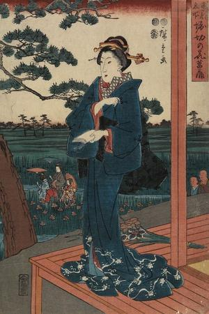 Iris Gaeden at Horikiri, April 1852