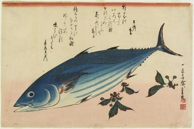 Bonito and Cherry Leaves, 1832-1833