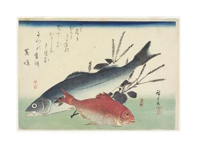 Red Snapper, Sea Bass and Perilla, C. 1840