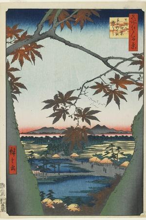 Maple Trees at Mama with View of Tekona Shrine and Bridge, January 1857