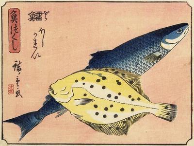 Cod and Halibut, 1830-1844