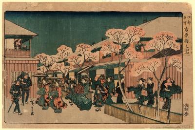 Yoshiwara Sakura No Zu