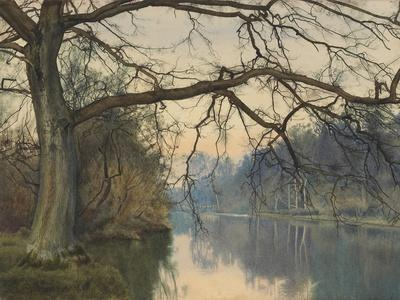 A Great Tree on a Riverbank, 1892 (Pencil, Pen and Black Ink and W/C on Paper)