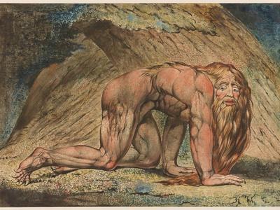 Nebuchadnezzar, 1795