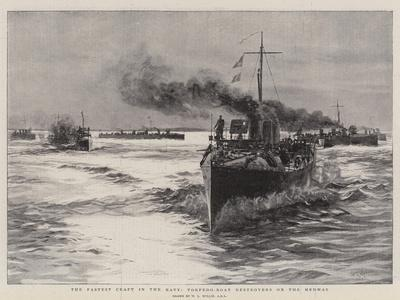The Fastest Craft in the Navy, Torpedo-Boat Destroyers on the Medway