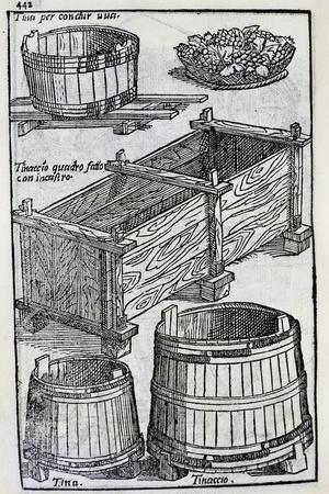 Grape Vats from the Twenty Days of Agriculture and the Pleasures of the Villa