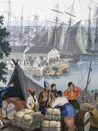 Port of Boston in United States of America