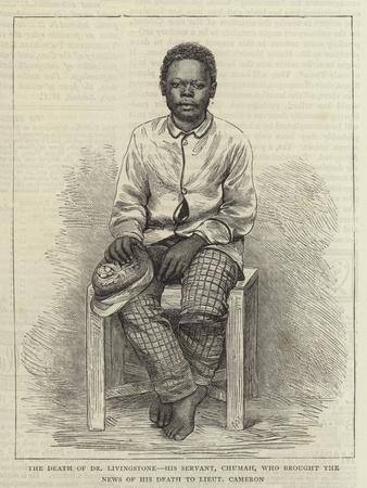 The Death of Dr Livingstone