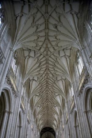 Vault of Nave in Winchester Cathedral