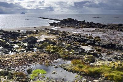 Intertidal Zone of Rugged Beach, Kildonan Shore, Isle of Arran, North Ayrshire, Scotland, Uk