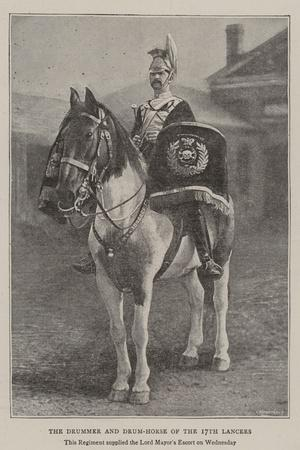 The Drummer and Drum-Horse of the 17th Lancers