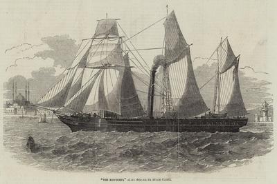 The Bosphorus Screw-Propeller Steam-Vessel