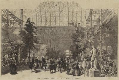 The Crystal Palace, as a Winter Garden