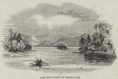 Lake Trout Fishing, in Derwentwater