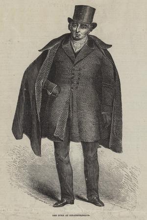 The Duke at Strathfeldsaye