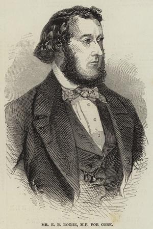 Mr E B Roche