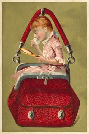 Girl in a Handbag Looking in a Mirror