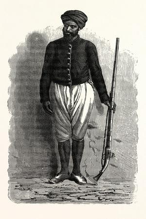 An Arab Soldier of Tunis