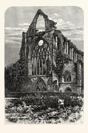 West Front of Tintern Abbey, UK