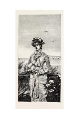 Summer Season, Fashion, 1882