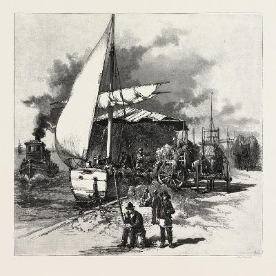 Montreal, Unloading Hay Barges, Canada, Nineteenth Century