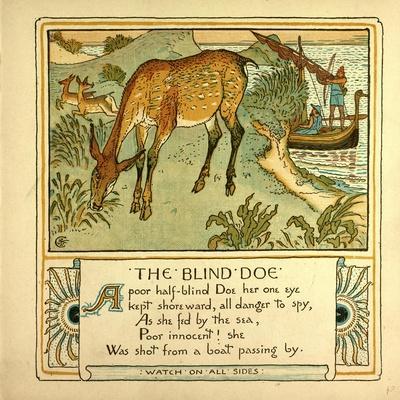 The Blind Doe