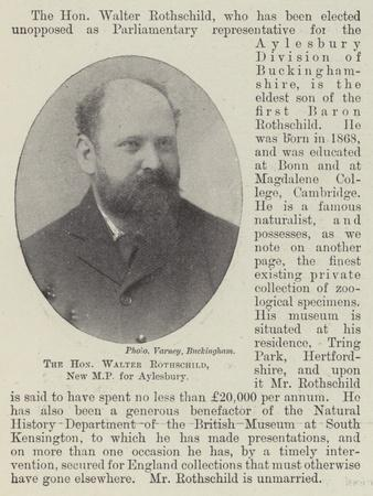 The Honourable Walter Rothschild, New Mp for Aylesbury