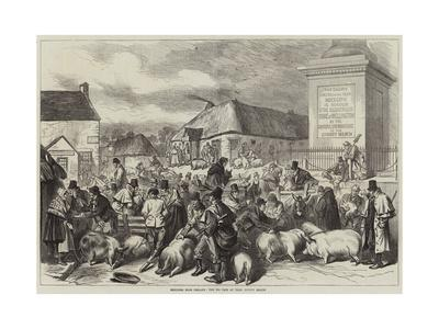 Sketches from Ireland, the Pig Fair at Trim, County Meath