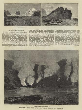 Sketches from the Antipodes, White Island, New Zealand