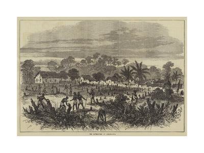 The Battle-Field of Abrakrampa