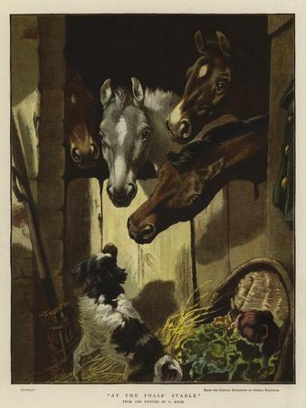 At the Foals' Stable