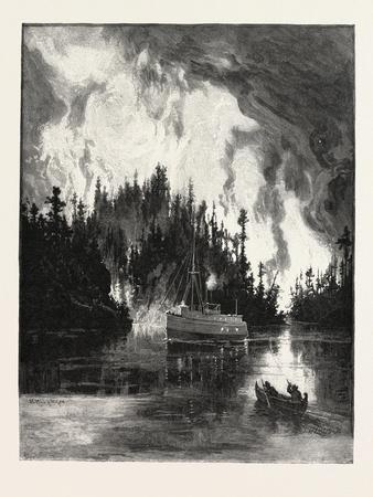 A Bush Fire by Night, Canada, Nineteenth Century