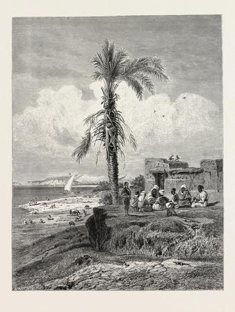 Bank of the Nile in the Neighbourhood of Abydos. Egypt, 1879