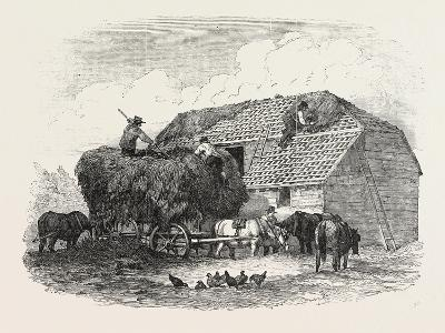 Agricultural Pictures:  Thatching, 1846