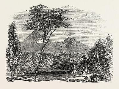 View in Crofton Park, New Zealand, 1851