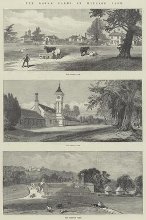 The Royal Farms in Windsor Park