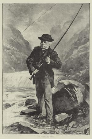 Mr Bright Salmon-Fishing
