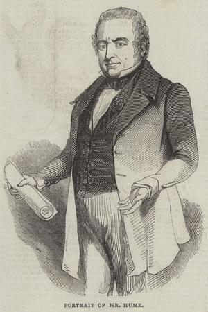 Portrait of Mr Hume