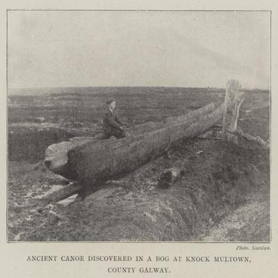 Ancient Canoe Discovered in a Bog at Knock Multown, County Galway