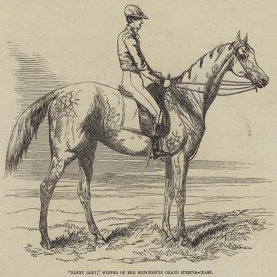 Fanny Grey, Winner of the Manchester Grand Steeple-Chase
