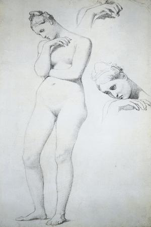 France, Nude Study for Stratonice