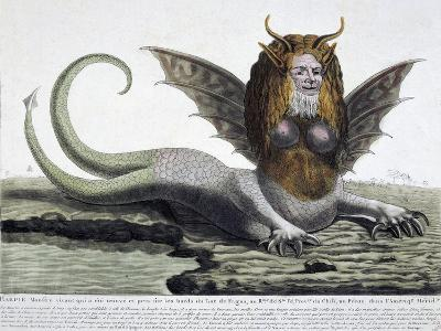 Harpy, Monster Found on Shores of Lake Fagua in Chile, 1784, Print