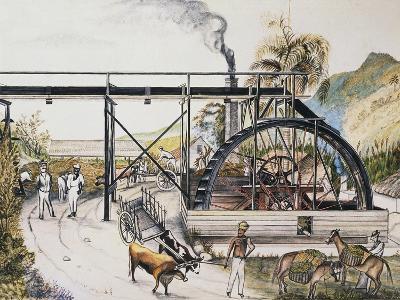 Sugar Refinery in Guinea, Watercolour, 20th Century