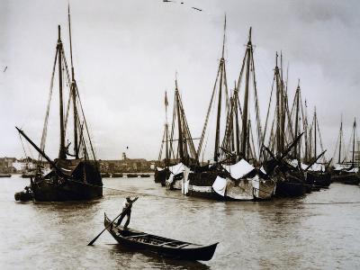 Boats known as Bragozzi, Chioggia, Italy, Early 20th Century