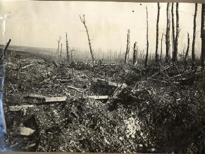 Desolation and German Barbed Wire at St Pierre Divion, 1914-18