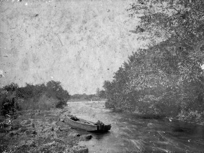 Miami River Rapids Looking West at Edge of the Everglades, C.1905