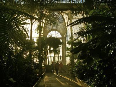 Inside the The Palm House, Kew Gardens, London