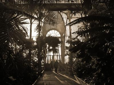 Inside the The Palm House, Kew Gardens, London