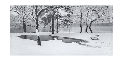 Prospect Park Snowy Bench Panorama