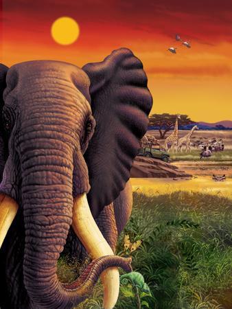 Big Buck Safari Elephant Cabinet Art